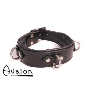 Avalon - VICTORY - Enkelt Collar med D-ringer og polstring, Sort